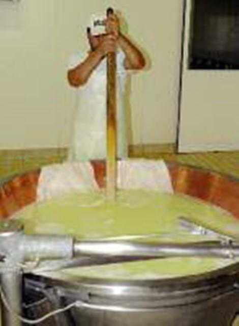 parmigiano 6 (2)