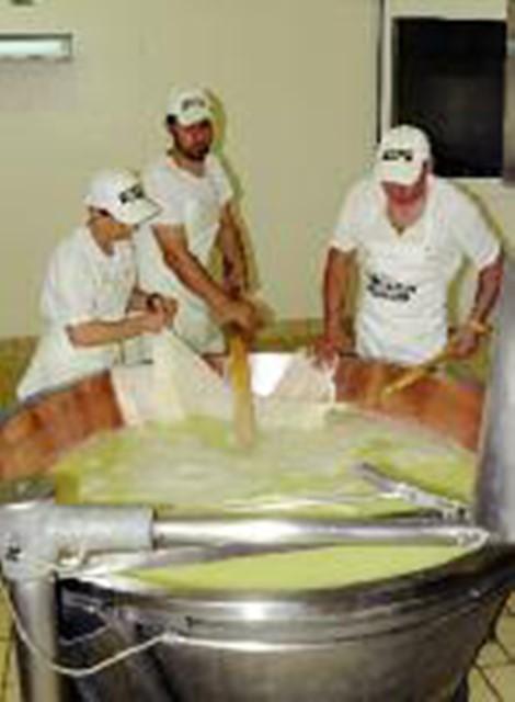 parmigiano 7 (2)