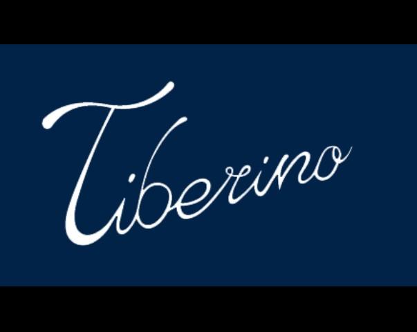 logo tib (2)