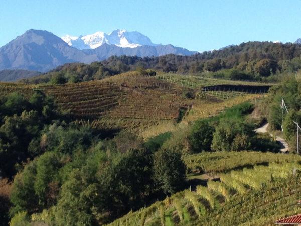 Vinitaly 2017 – Gli antichi moderni Nebbioli dell'Alto Piemonte