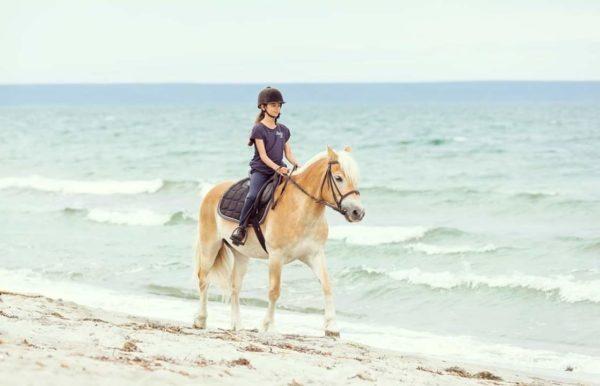 Dimore con Gusto – Horse Country Resort di Arborea (OR)